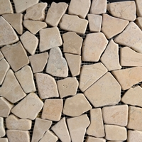 Yellow Flat Stone Pebble Mosaic Tile