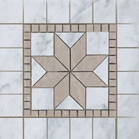 Medallion Mosaic Tile  Imperial Carrara with Bottichino Marble Polished